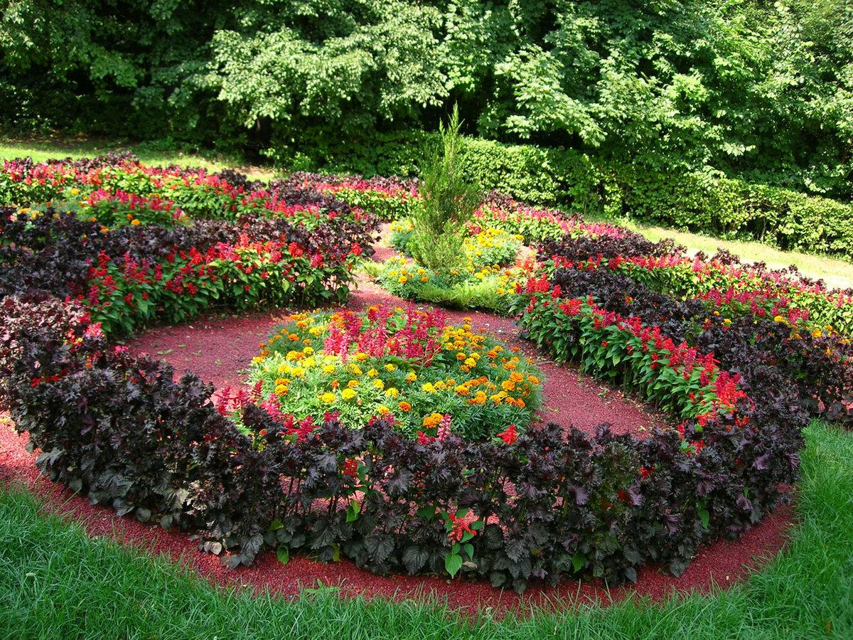мечтал смотреть фото красивых цветников и садов получится что