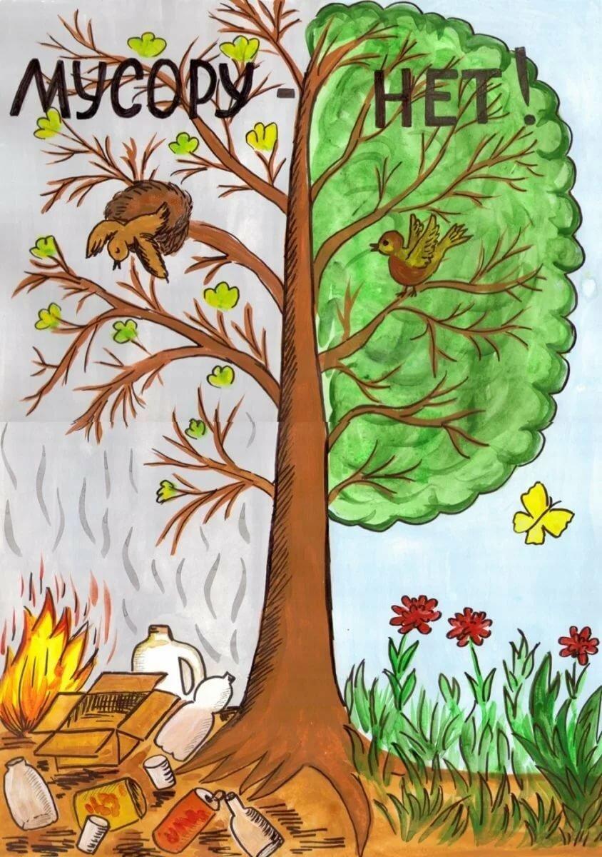 Днем, картинки об экологии 3 класс