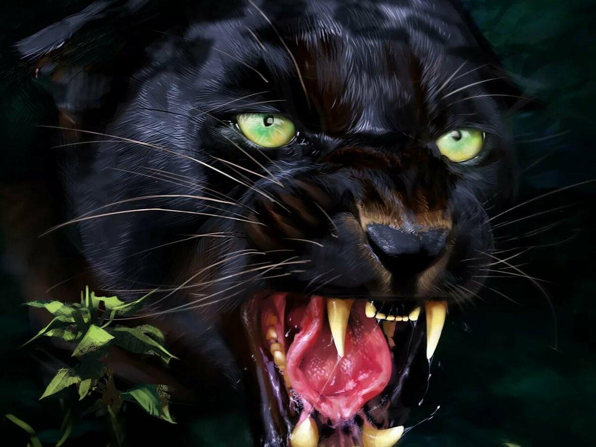 Картинки пантера черная злая, открытка векторе мерцающие