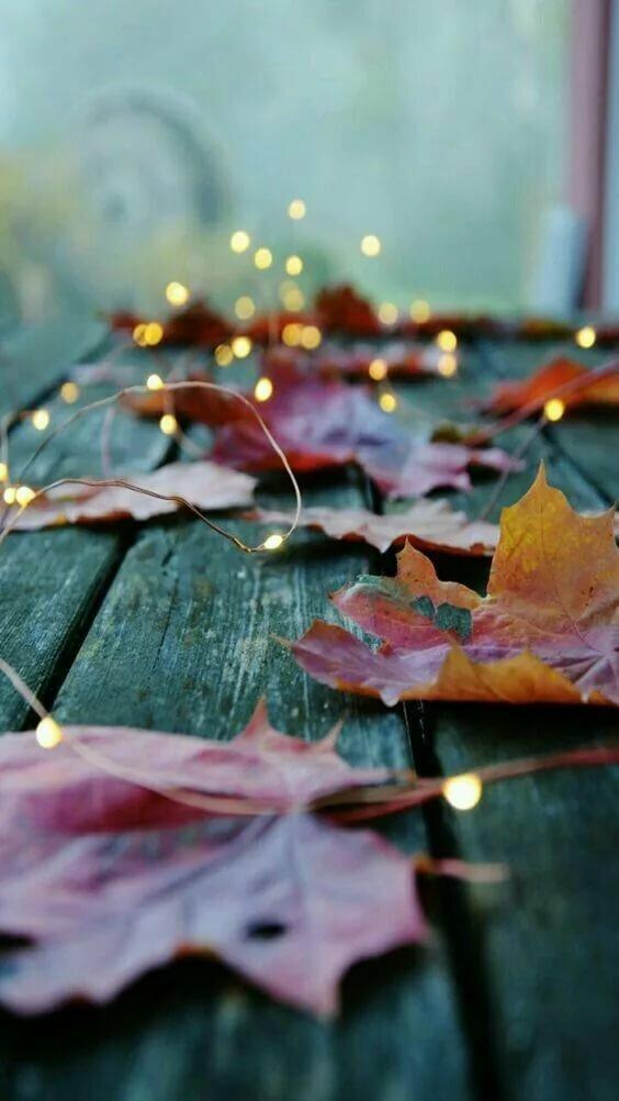 Осенние атмосферные картинки для телефона
