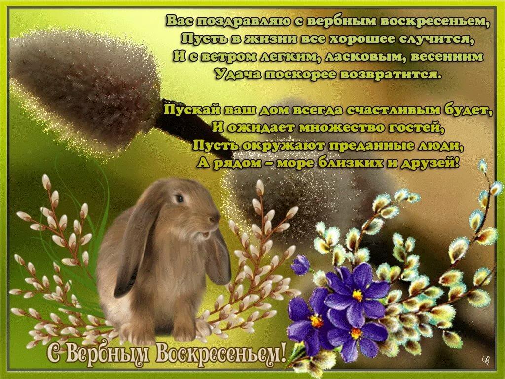 Вербное воскресение пожелание картинки