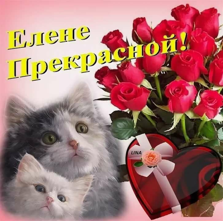 Елене цветы открытка