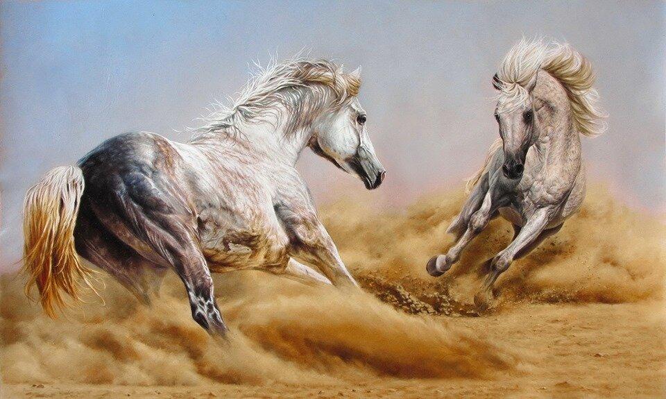 сто картинок лошадей верит