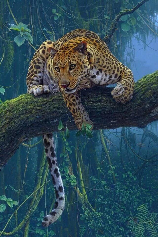 Для авы, картинки анимации красивые движущиеся животные