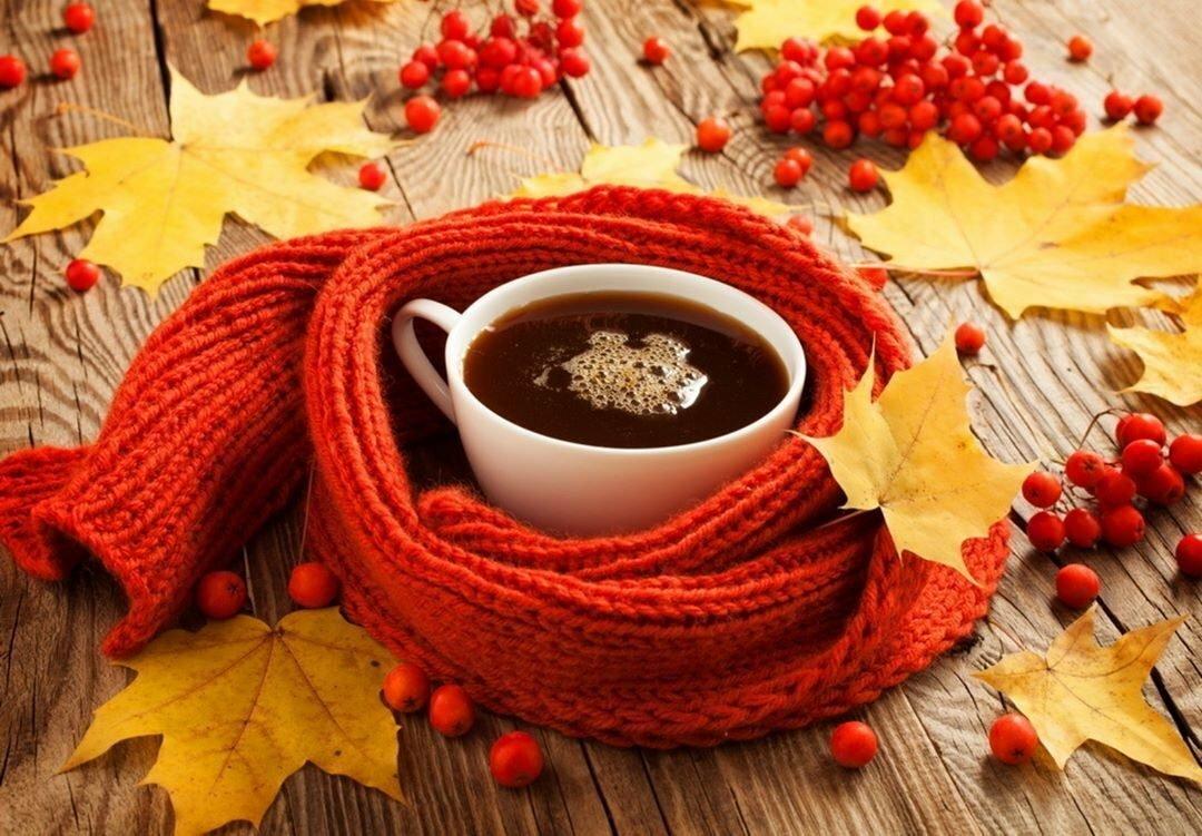 Кофе и осень красивые картинки, галереи рисованные
