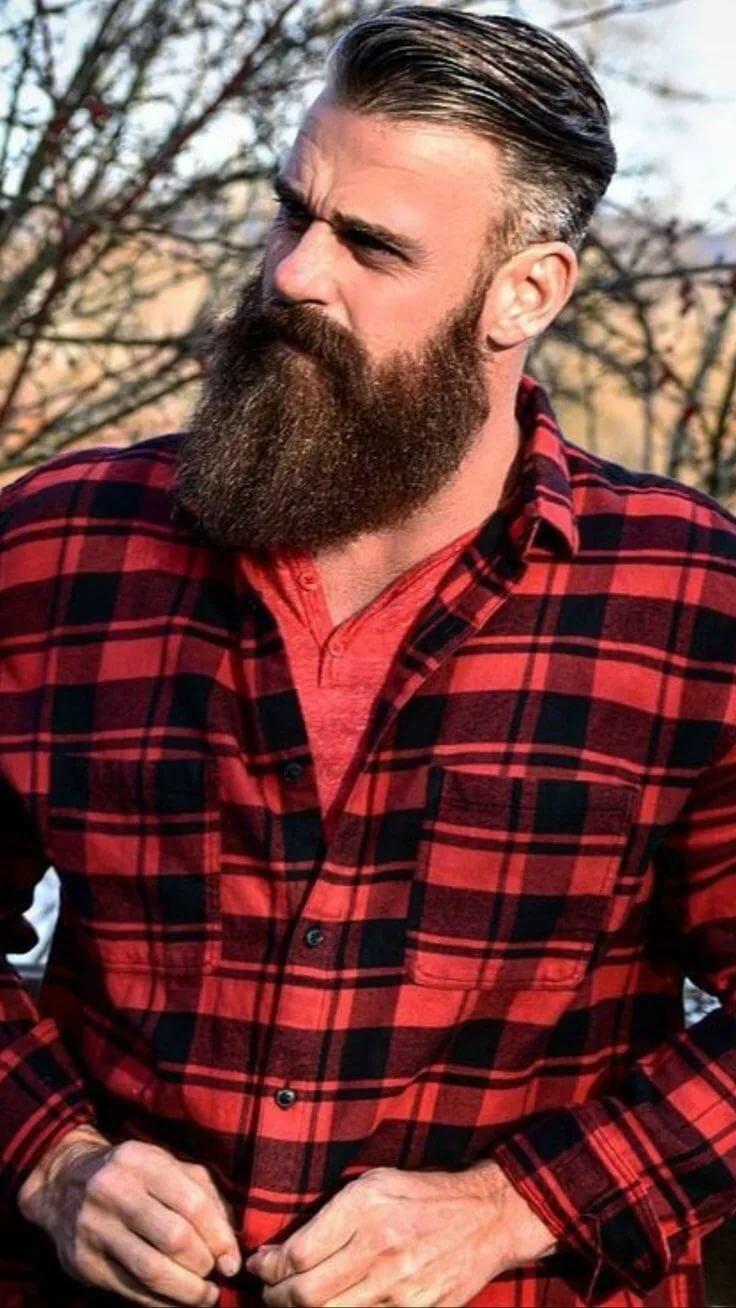 lumberjack plays phil taylor - 736×1308