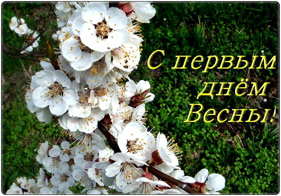Поздравления с первым днем весны и любви