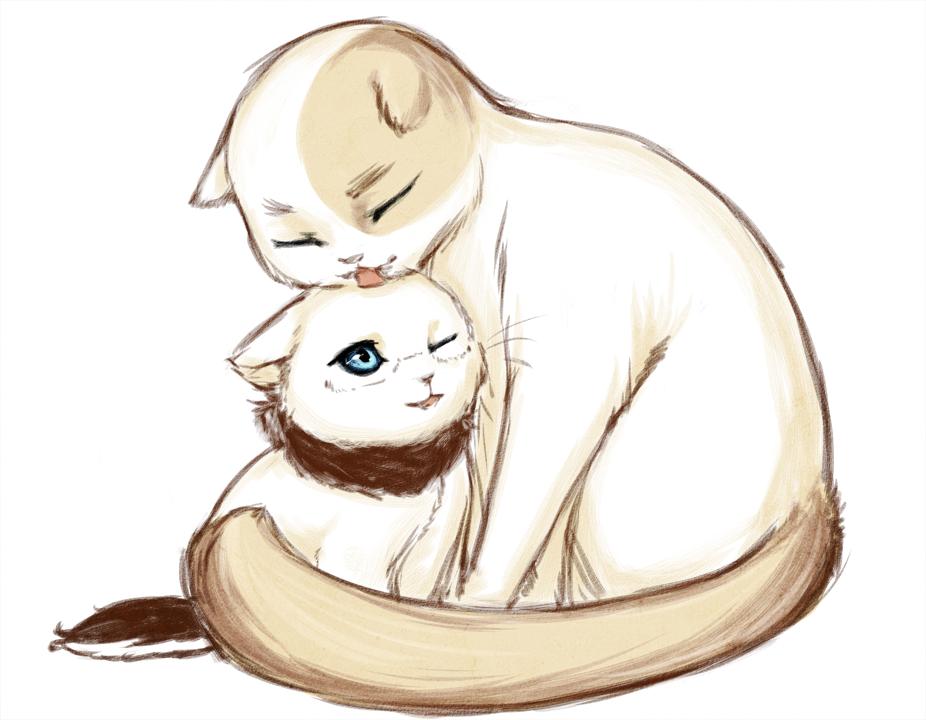 Картинки с обнимающимися котами нарисованные