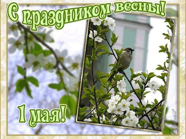 Муз открытка 1 мая
