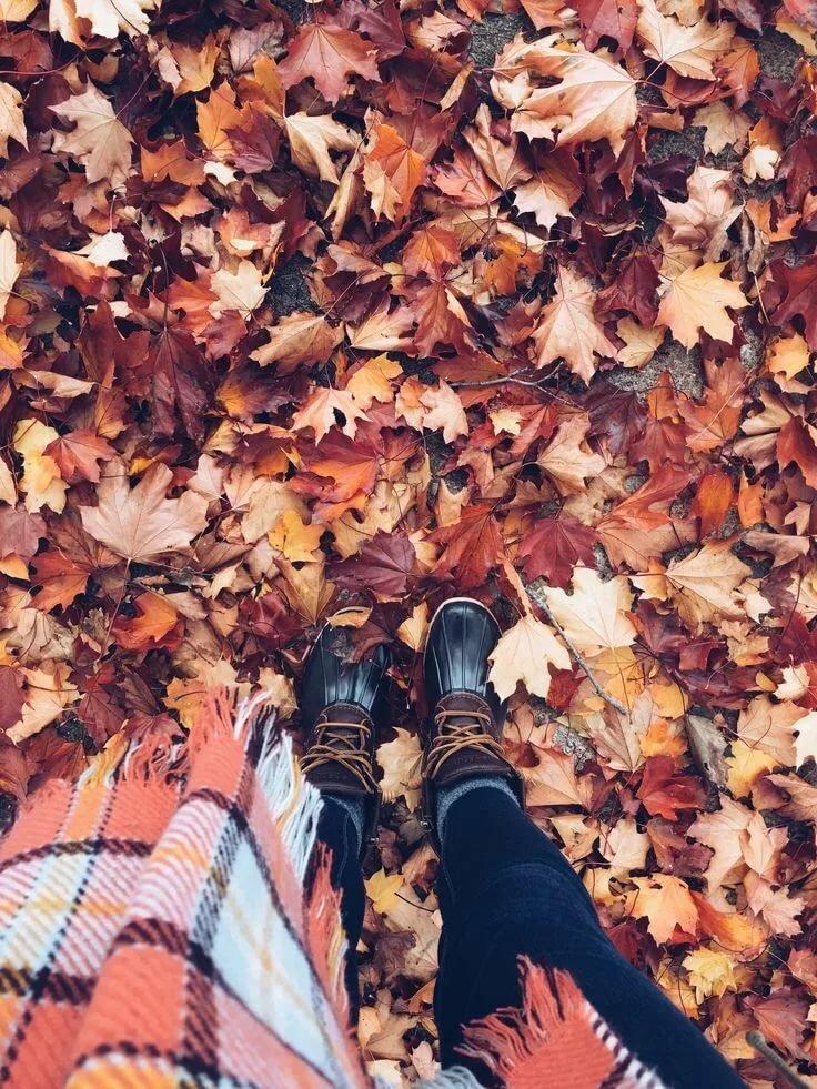 картинки для инстаграма про осень никогда столкнетесь пренебрежением