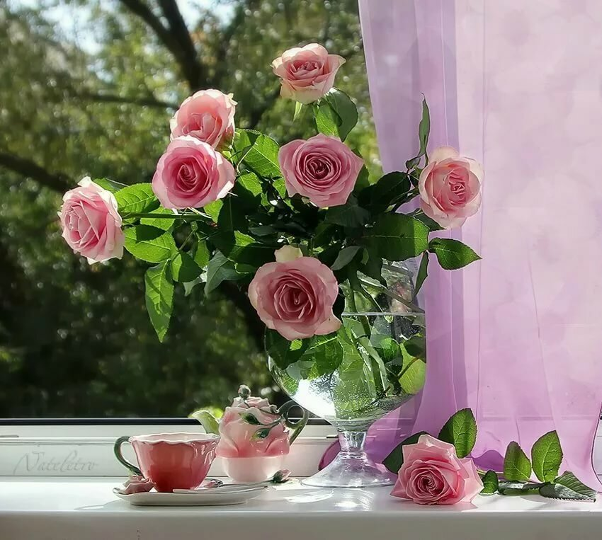 Открытки букет роз с добрым утром, открытки днем рождения
