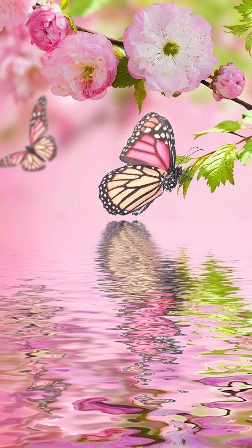 Картинки на ватсап цветы и природа