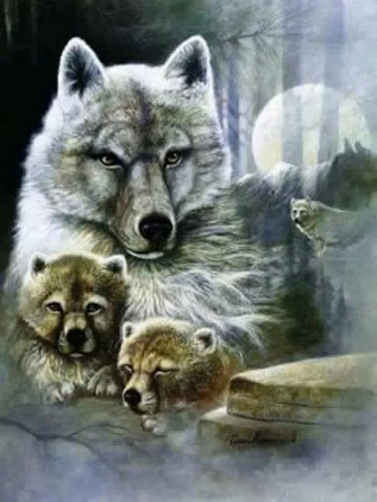 картинки тату волчица с волчатами крыша заставлена