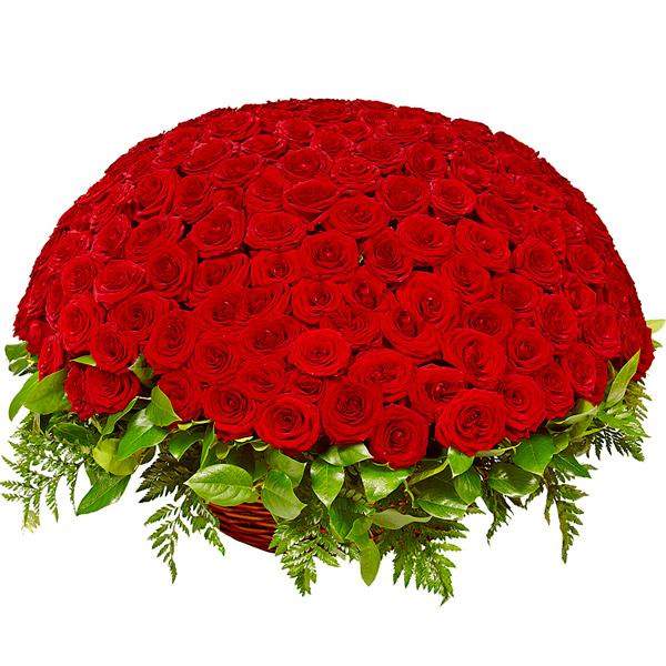 Для, открытки с днем рождения миллион роз