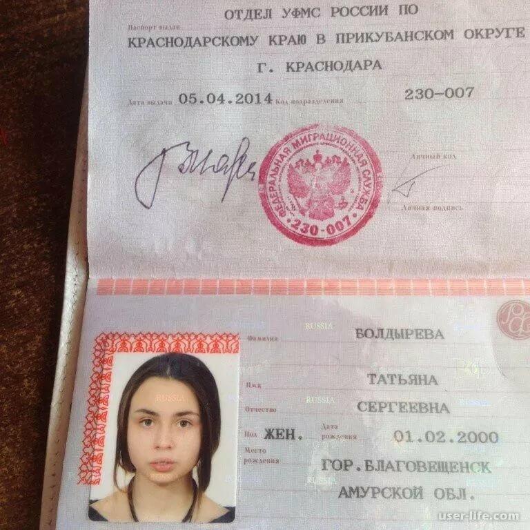 Вечера, картинки копии паспорта