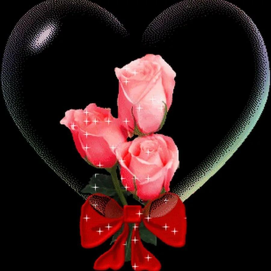 Фото и название двухцветных роз