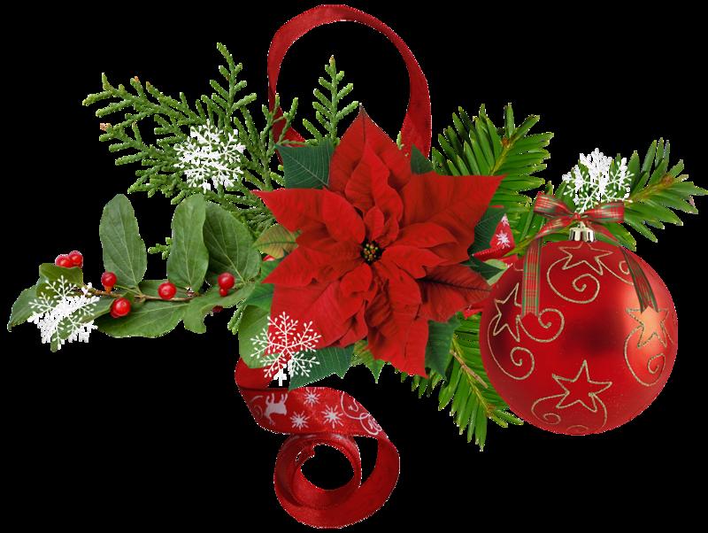 Изобилия картинки, цветы для новогодней открытки