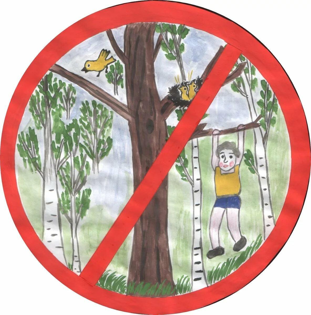 Картинки об охране природы для детей дошкольного возраста
