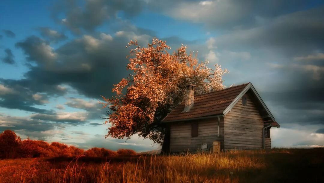 Картинки дом на природе с солнцем, поздравление