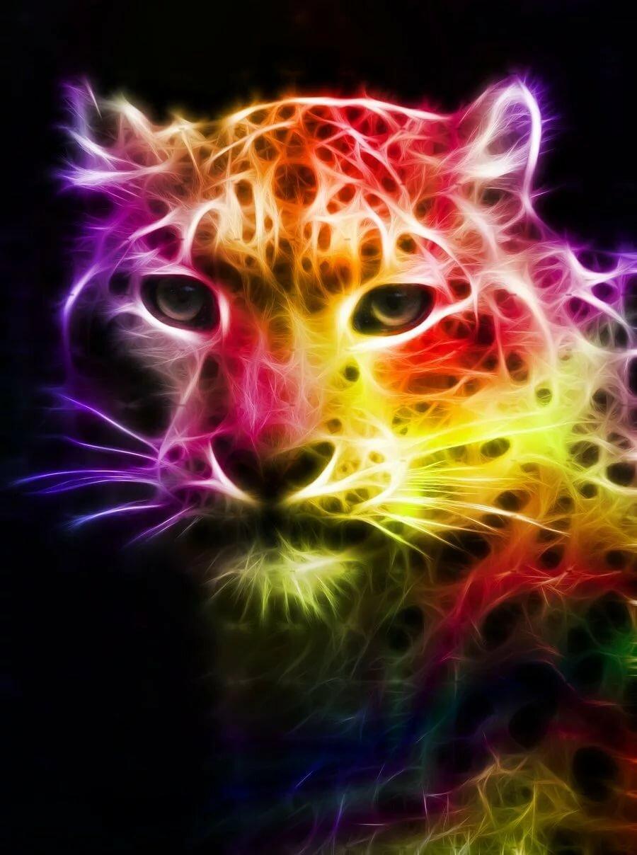 Красивые крутые картинки животные