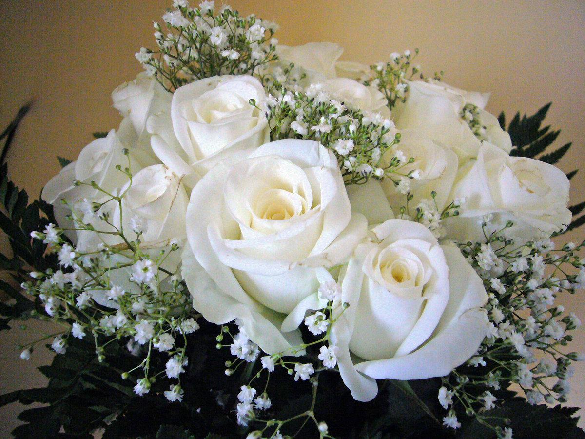 Открытки белые розы для любимой жены