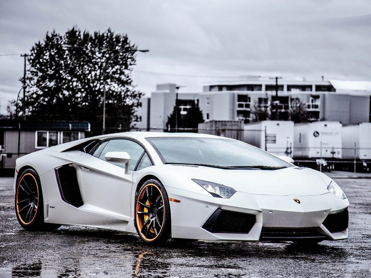 "2015 lamborghini aventador white "" — card from user nick.8130 in"