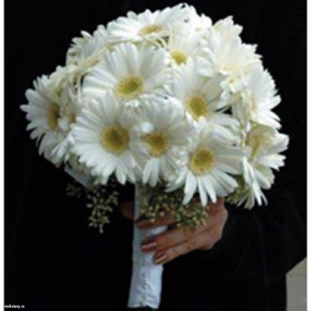 Похожие ирисы, свадебный букет круглый из ромашек цена