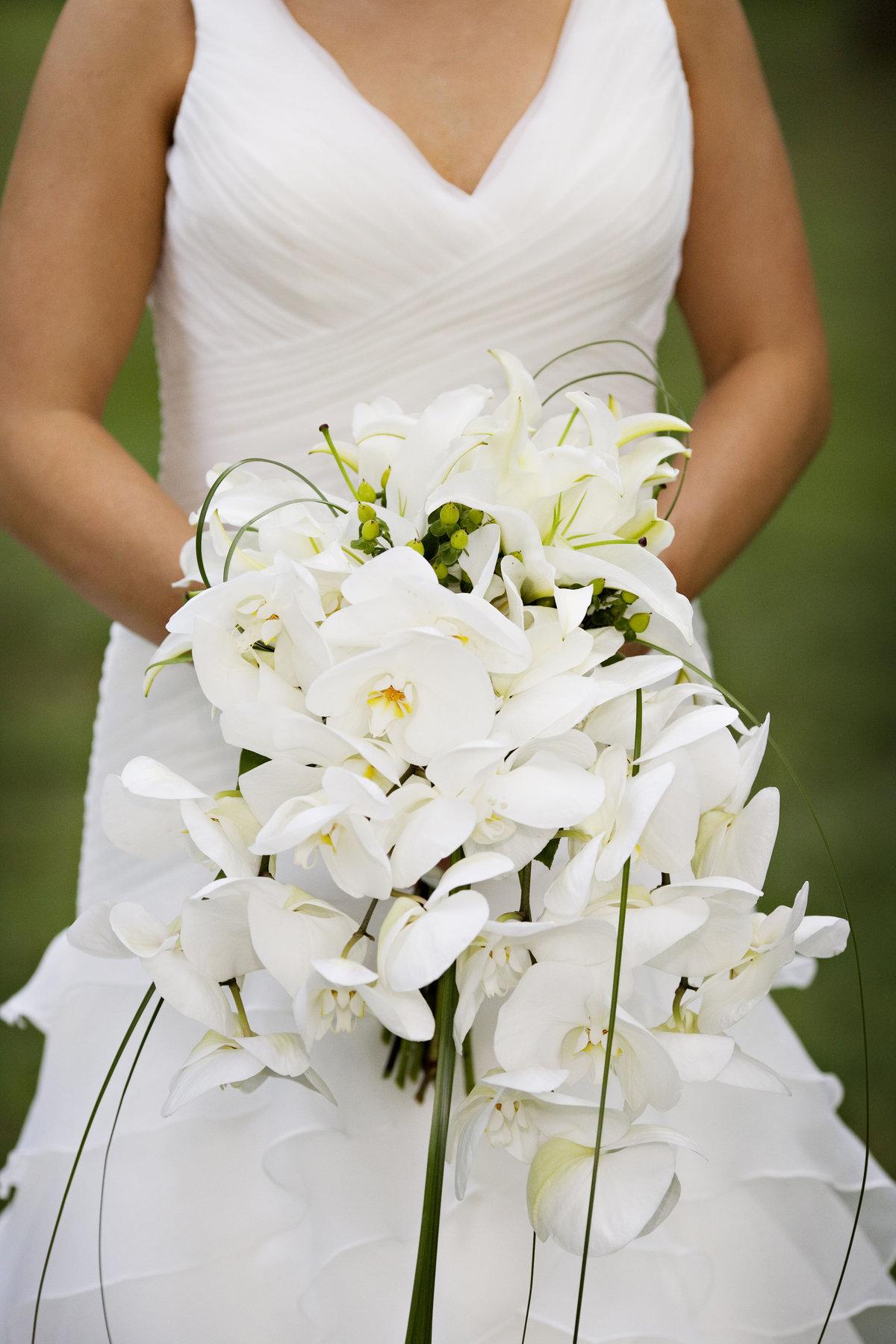 Цветы, белые орхидеи свадебный букет
