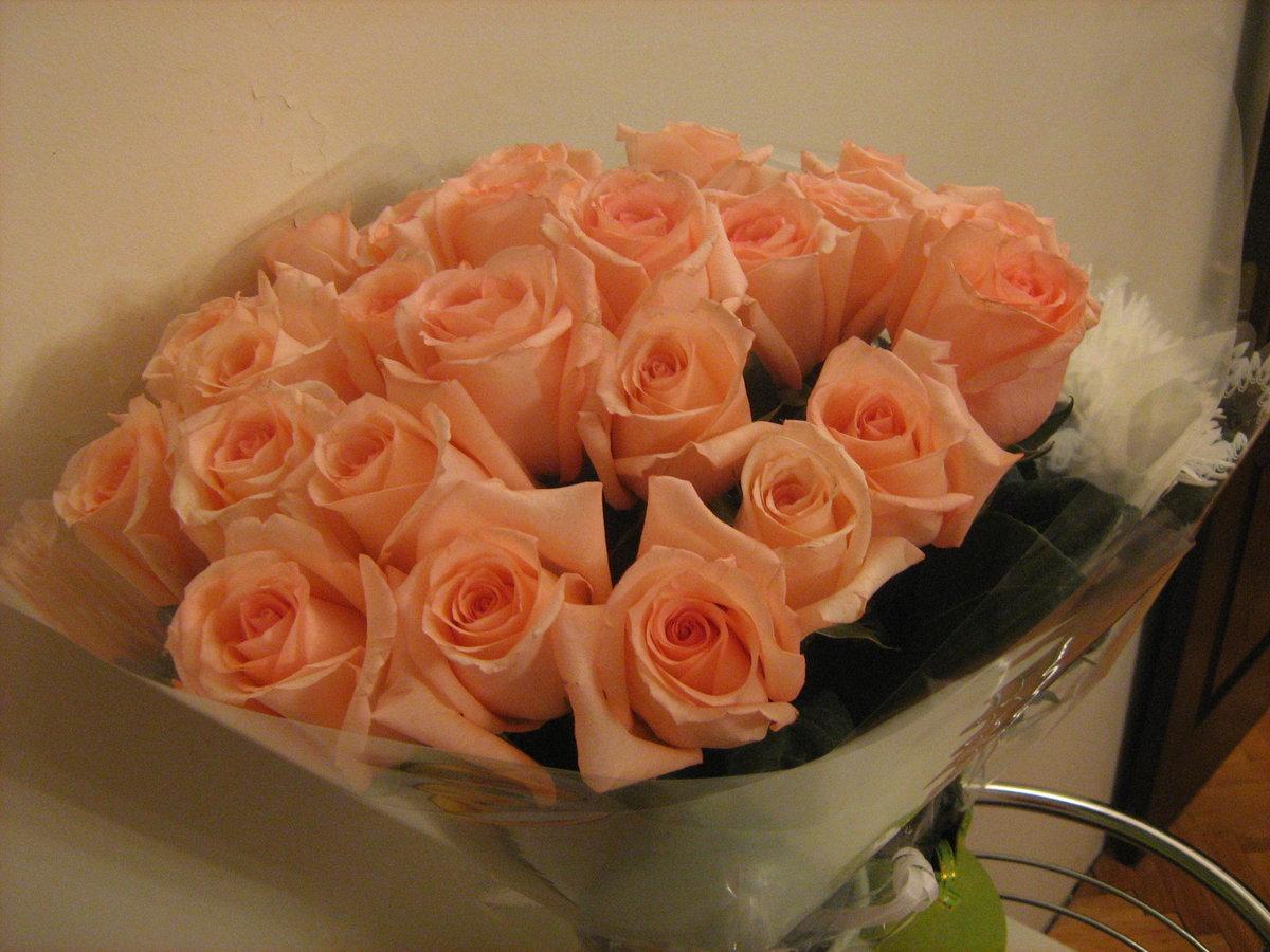 фото букет роз от любимого лошадей существует