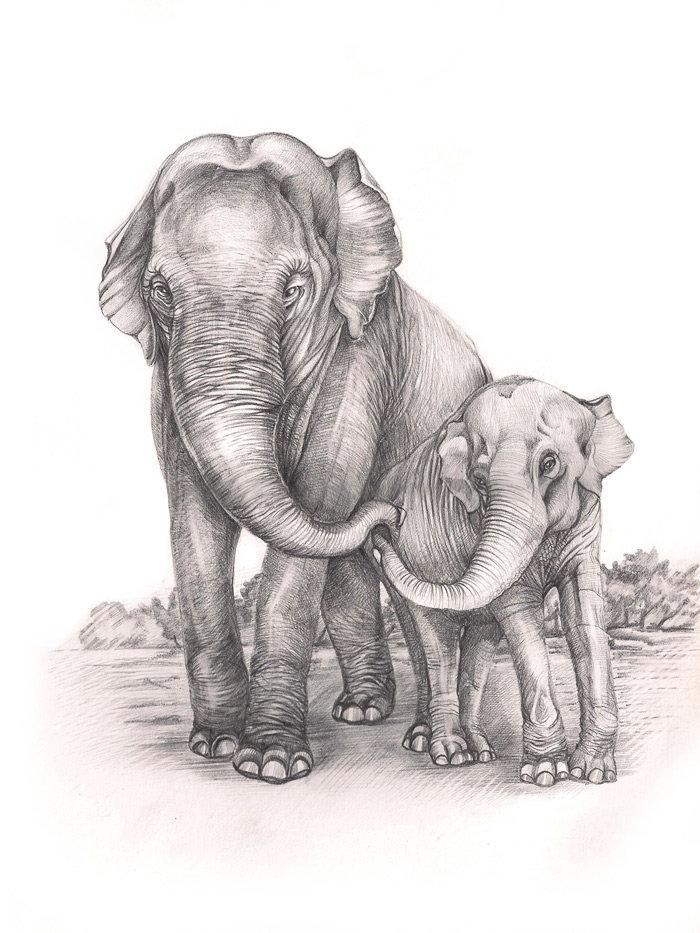 слоники рисунок карандашом праздник или