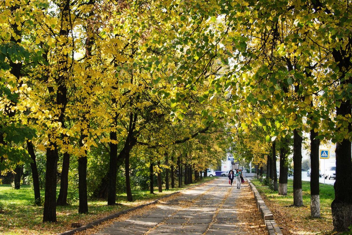 Осенняя казань фото