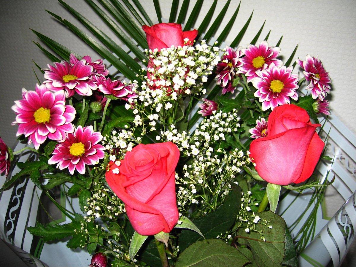самые красивые цветы в блогах фото настройки