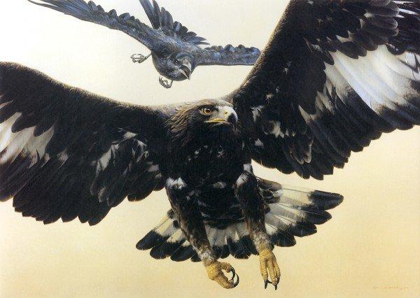 Рисунки ворон