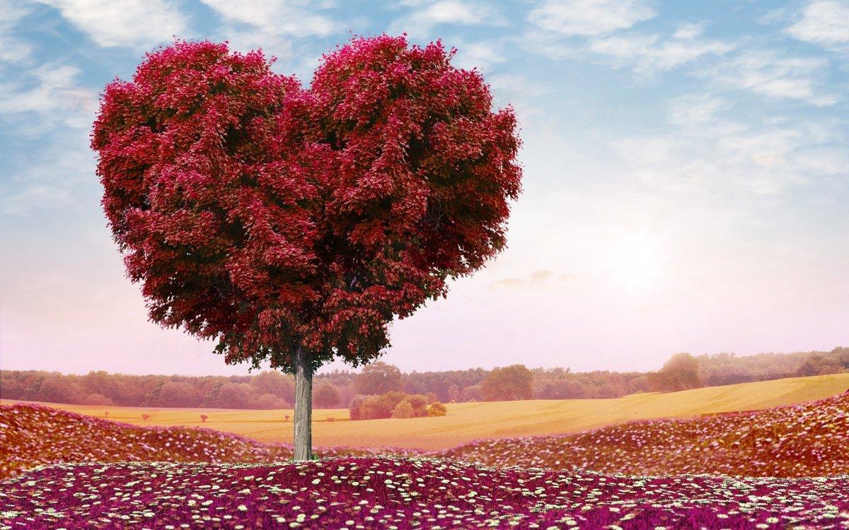 Здоровье, красивые картинки в виде сердечек