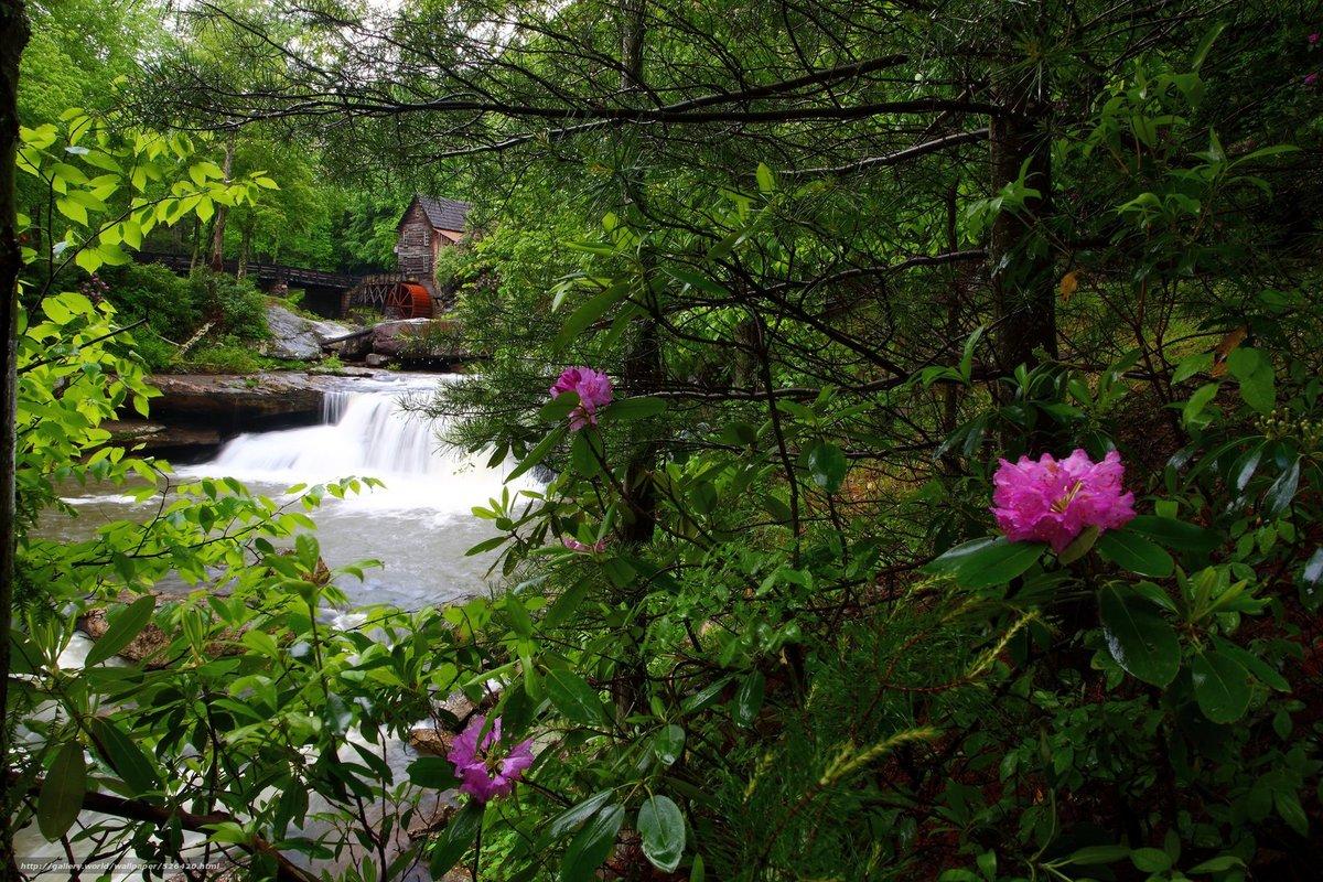 товаров категории картинки поляна с рекой цветами водопадом кипр считается