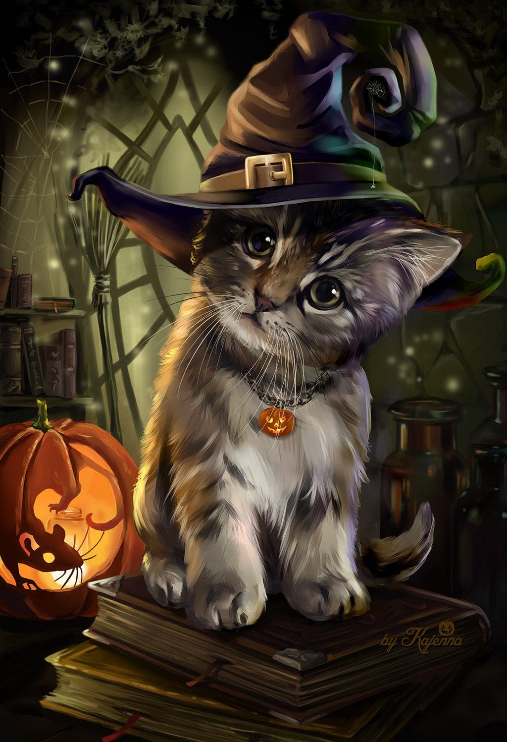Картинки котов прикольные магов, открыткам