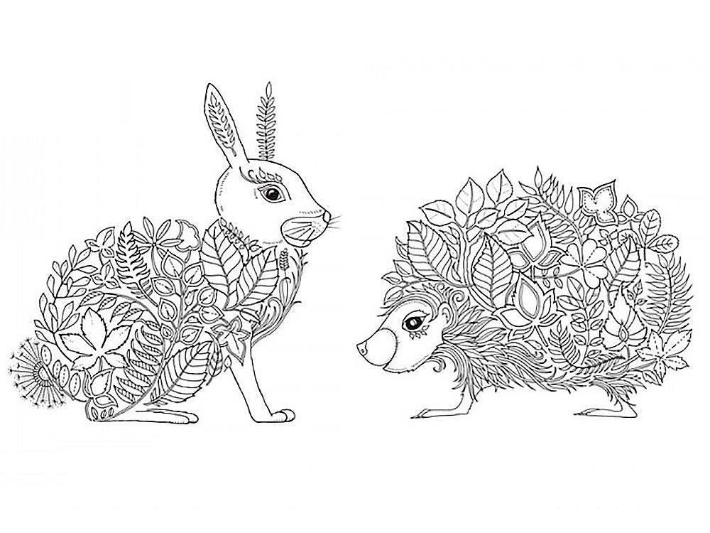 картинки раскраски зайчика и ежика