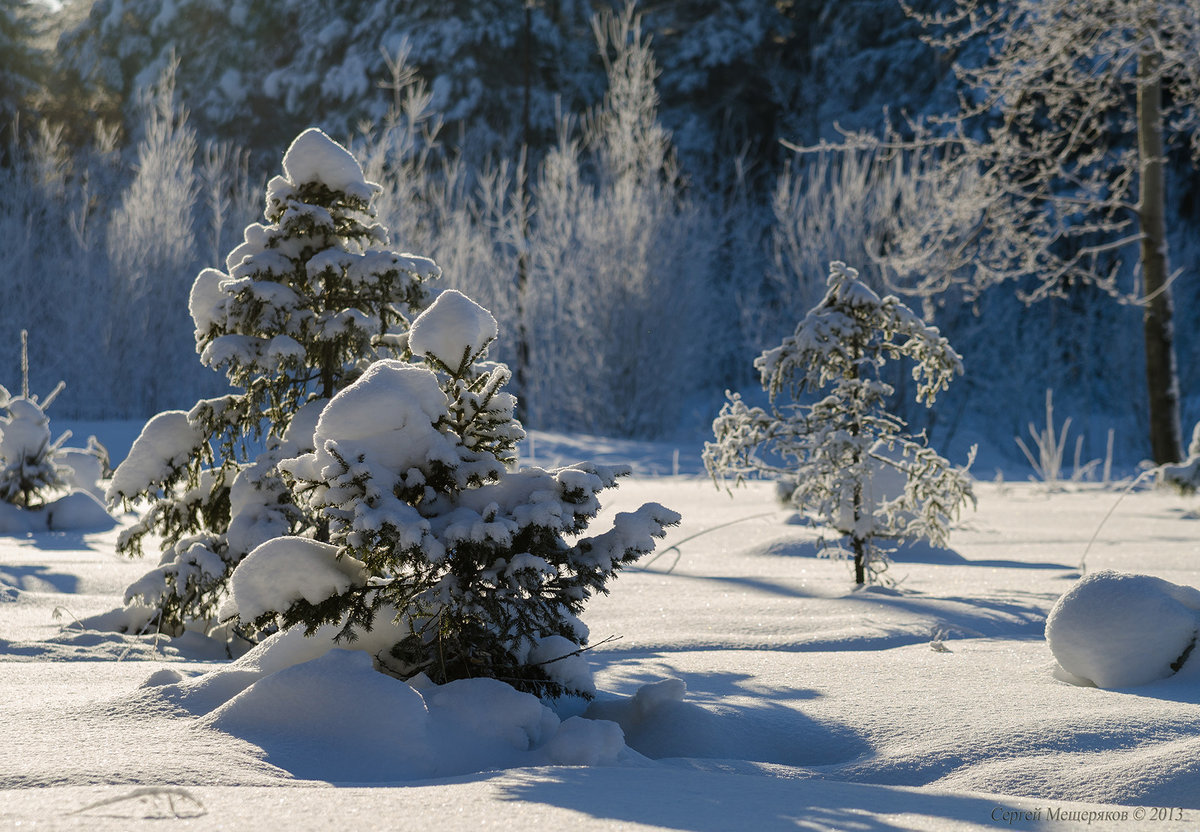 Все про зиму картинки