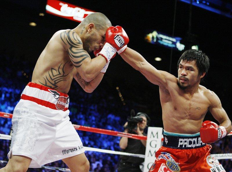 Професианальный бокс