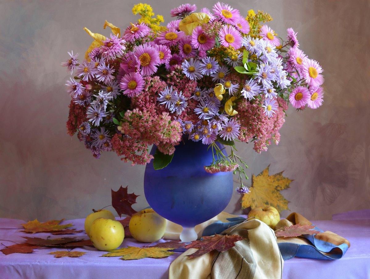 Фото семена хризантем является автором