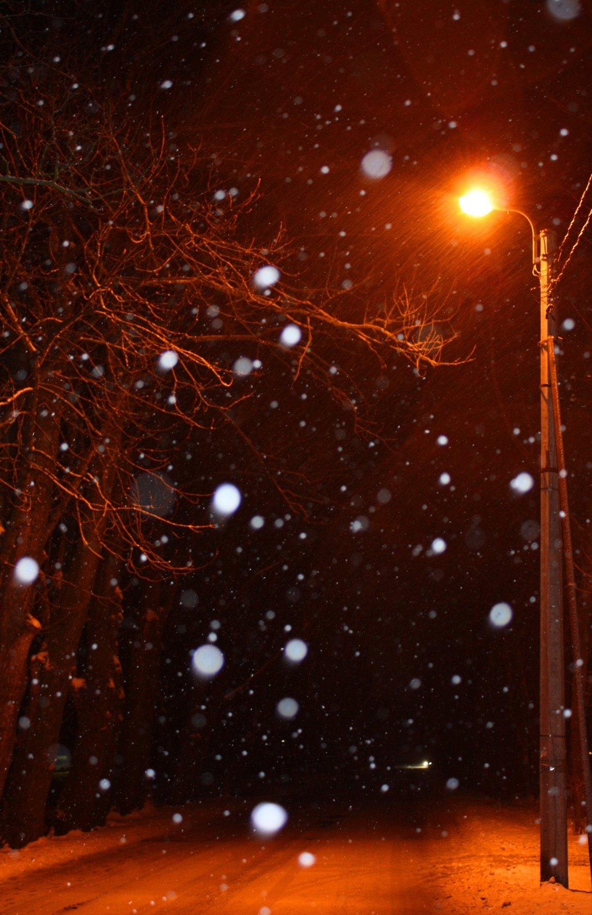ограниченной ответственностью фото зимы ночью идет снег рассказал