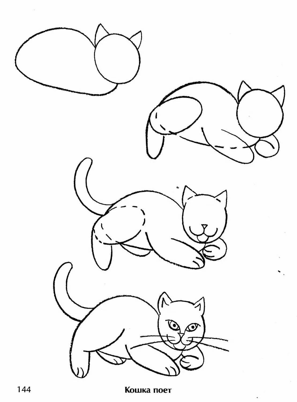 снимки коты картинки поэтапно для друзьями