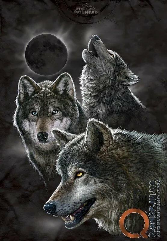 Днем рождения, картинки с анимациями волки