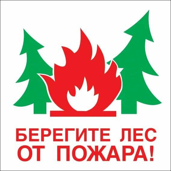 паштет, рецепт береги лес от пожара плакаты будь всегда для