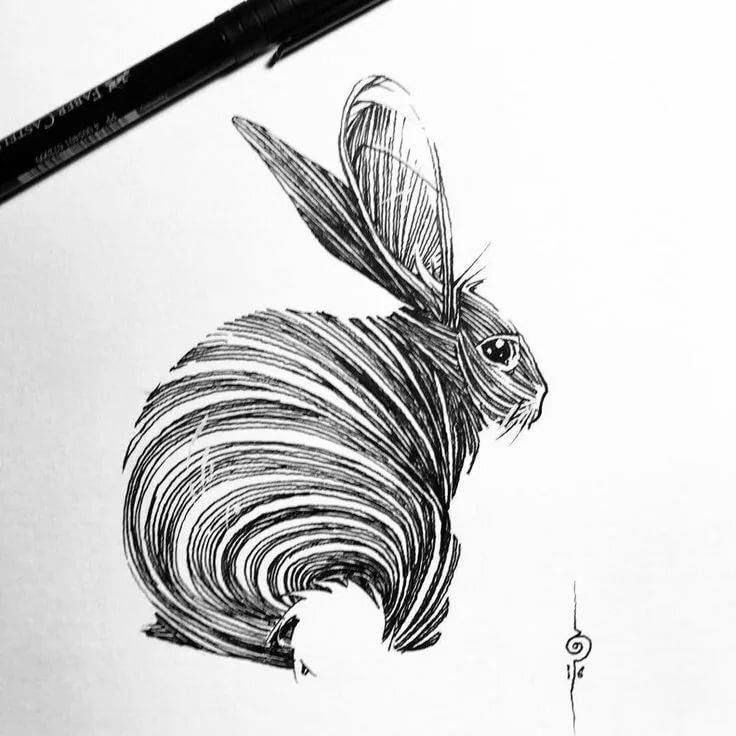 Заяц стилизованные картинки