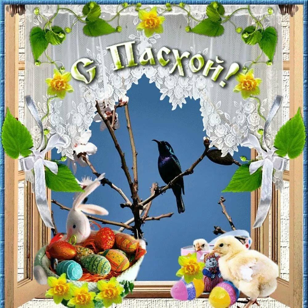 Картинки с праздником пасхи поздравления анимация, днем начальнику красотки