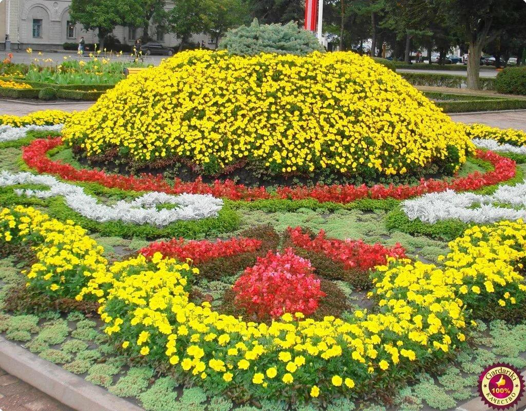 нашем фото цветников пользователей сайтов амалга ошириш учун