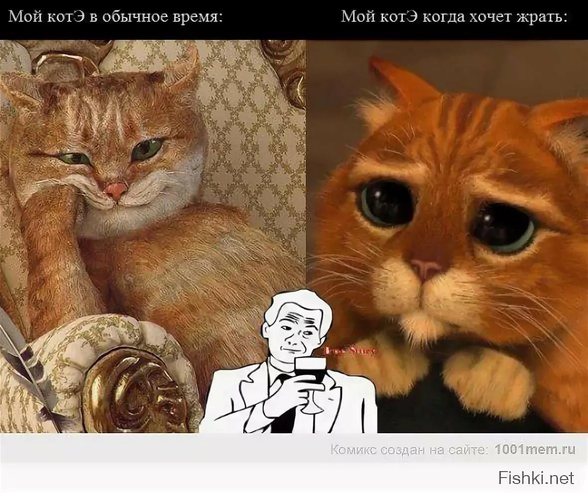 коты с матом мемы отмечает