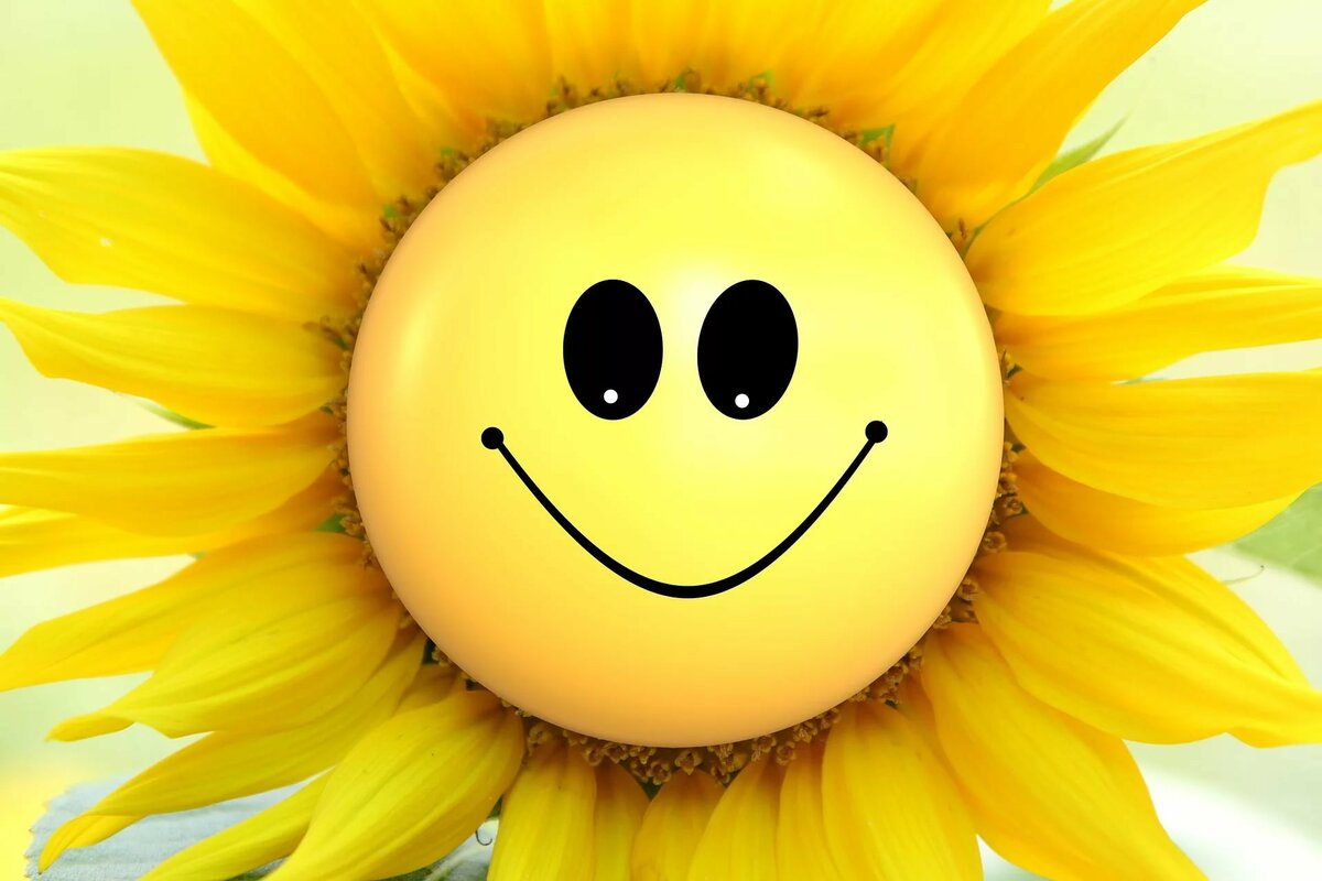 Красивые картинки про улыбку, газовик картинки