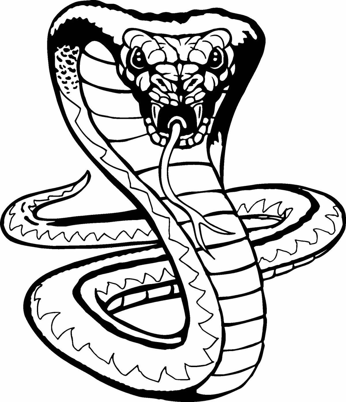 Крутые рисунки змей